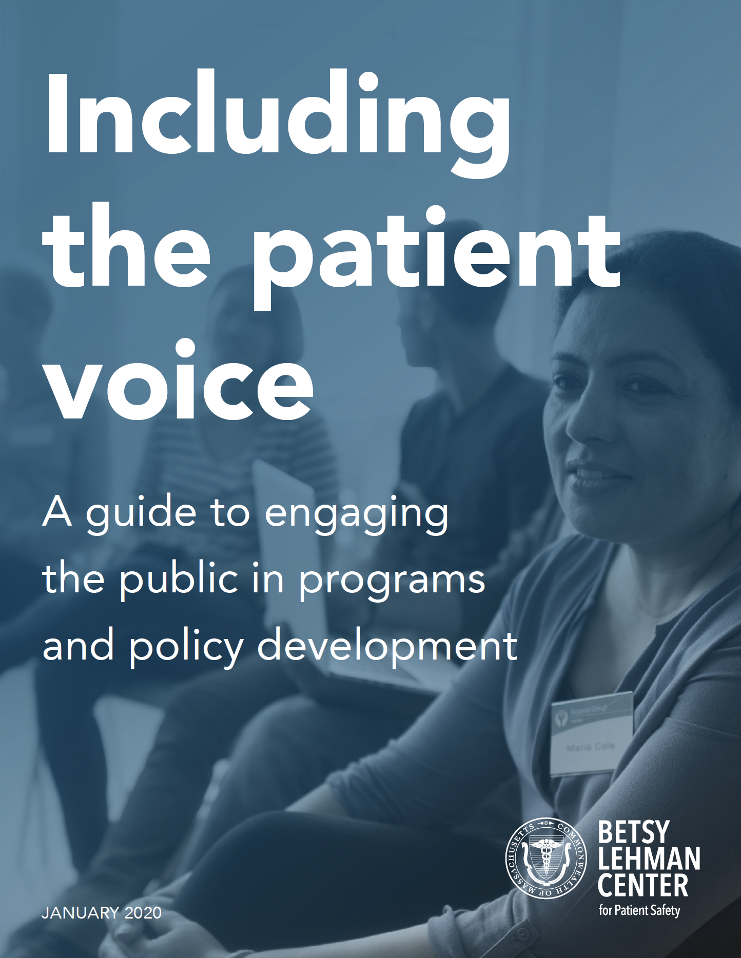 Including The Patient Voice Cover