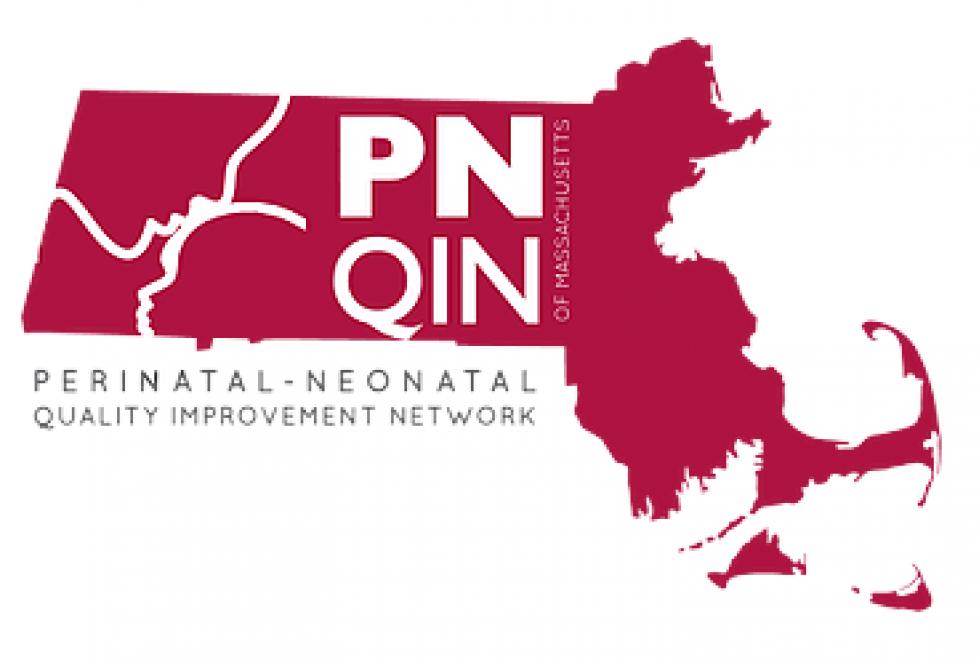 PNQIN logo